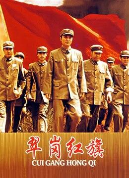 《翠岗红旗》1951年中国大陆剧情,战争电影在线观看