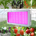 Full Spectrum 600W LED Grow Light Red+Blue+UV+IR AC85~265V Led Plant Lamps Best For Hydroponics Vegetables and Flowering Plants