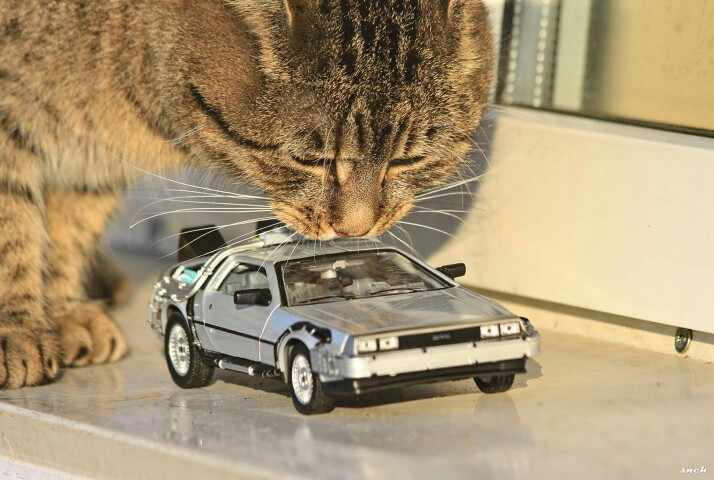 1:24 Bilancia Diecast Auto Oart 1 2 3 Macchina del Tempo In Metallo In Lega Modello di Auto Giocattoli DeLorean DMC-12 Modello Welly Posteriore per il Futuro Auto