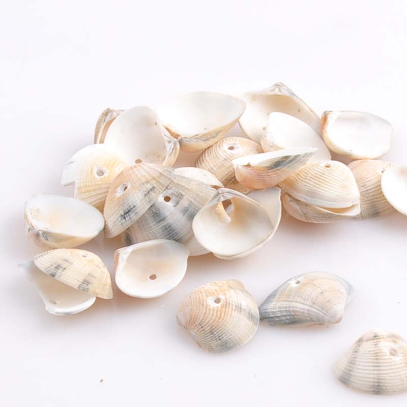 One Hole Spiral Sea Shell Loose Beads For Jewelry Making Home Craft Decoration Accessories 50pcs 20x26mm TRS0135