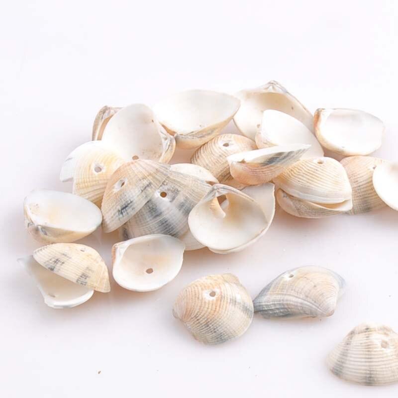 artigianato conchiglie di mare-acquista a poco prezzo artigianato ... - Conchiglie Per Decorazioni
