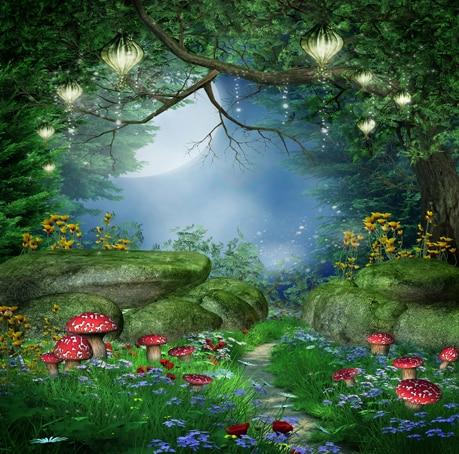 10x10ft Night Moon Forest Lantern Rocks Mushroom Grass