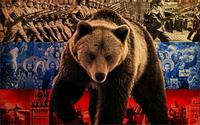 Animal Russian Big Bear Nation Fighting History 4 Size Wall Decoration Canvas Poster Print
