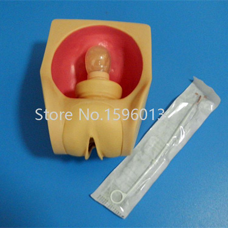 все цены на Female Contraception Practice Simulator, Intrauterine contraceptive device training model, IUD Training model