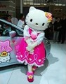 Calidad de la hello kitty traje de la mascota de hello kitty traje de la mascota, head, no de cartón envío gratis