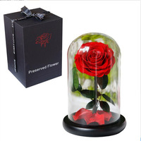 Eternal life to spend Glass box Valentine's day gift Mother's day gift Fancy rose
