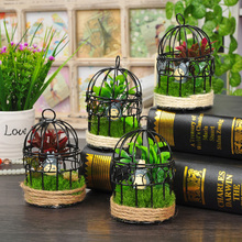 Caioffer Black Zakka Birdcage Gaiola Decorativa Fashion Mini Small Cages Oiseau Iron Decorative Bird Weddings