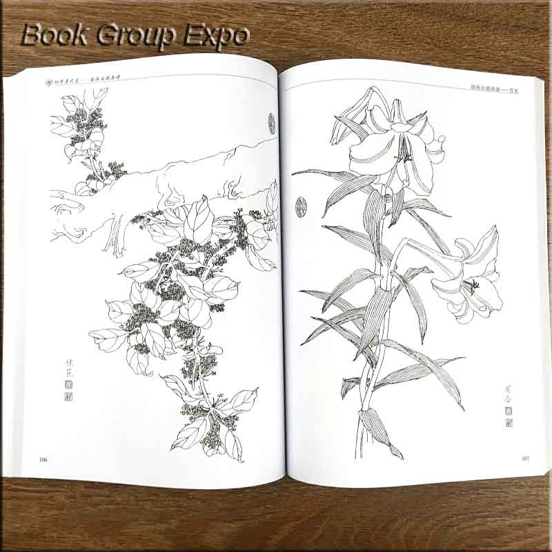 Image 3 - Chinese painting line drawing book Color pencil Flower Birds and insect coloring book for adults children-in Books from Office & School Supplies