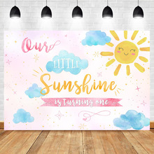 Sunshine Birthday Backdrop 1st First Boy Girl Pink Blue Summer Party Banner Photo Background Cake Table Decorate