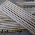 5A Eucalyptus Drum Stick Music Band Wiooden Rock Drumsticks Baqueta Percussion Vara Do Cilindro Trommelstock Musical Instrument