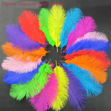 5pcs 15-20cm South African colored ostrich feathers Performance supplies wedding Diy handmade decorative feather AC089