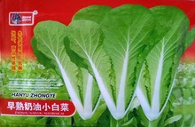 free shipping  1 original pack 450+pcs Cream of Chinese cabbage , balcony bonsai  vegetable seeds for Home Garden free shipping