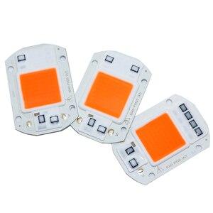 Image 2 - 100 Chiếc AC110V 220V COB Chip LED Phyto Đèn Suốt 20W 30W 50W Diode phát Triển Đèn Fitolampy Cho Cây Con Trong Nhà