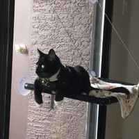 Detachable Pet Hanging Beds Cat Sunny Seat Window Suction Mount Pet Cat Hammock Comfortable Soft Cat Pet Bed