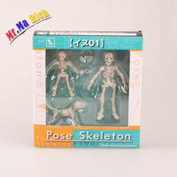 Skeleton Human Child Dog Skeleton Body Chan Pale Orange Color Ver Body Kun Youth Action Figure Model Toy Gift