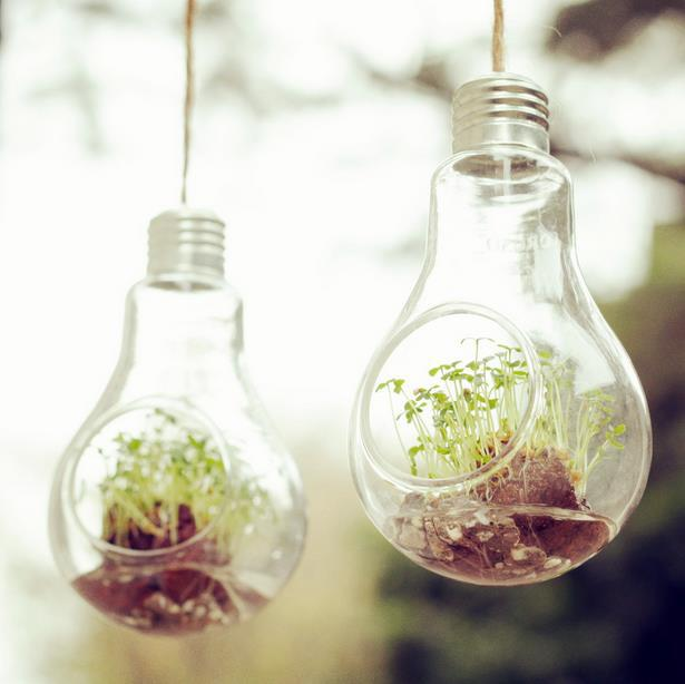 Aliexpress Com Buy Free Shipping Home Decor Creative Bulb Vase Microlandschaft Water Planting Glass Vessel Hanging