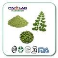 Envío Libre 1 kg embalaje a granel de Alta calidad polvo de Moringa cápsula 500 mg * 300 unids