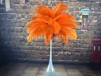 Wholesale - 100pcs lot Orange Ostrich Feather ,ostrich plume wedding centerpiece Decoration Approx 12-14inch Free shipping