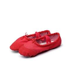 Msmax B106 детская балетная Обувь для танцев для девочек латинская балетные тапочки комнатные бальные туфли для девочек плоский каблук спортив...