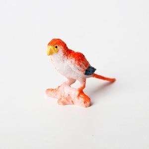Image 5 - 12 adet Simüle Plastik Kuş Hayvanları Modelleri oyuncak seti Yapay Çok renkli Kuş Figürleri Çocuklar Eğitici Oyuncaklar Toddlers için