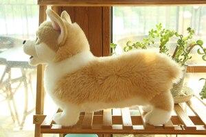 Image 5 - 32cm adorável simulação cão crianças bonecas corgi pelúcia animal de estimação macio brinquedos para crianças presente aniversário decoração coleção brinquedos