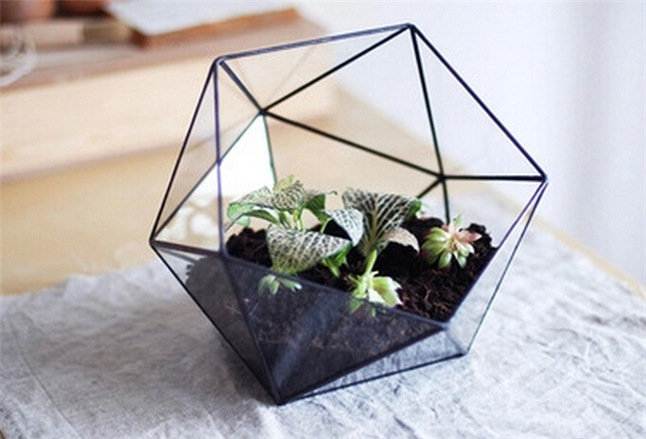Miniature Garden In Tabletop Glass Vaseshandmade Greenhouse Desktop