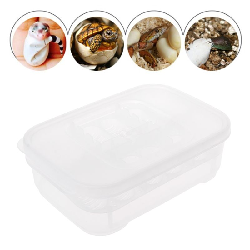 Professional Hatch Box Snake Lizard Reptile Egg Tray Boxes Hatching Device Climbing Pet Tortoise Turtle Incubator Supplies