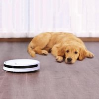 For Xiaomi Home Youth Version Intelligent Automatic Mini Sweeping Robot Automatic Wipe Machine Sweeping Robot dropshipping