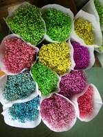 New Arrival 1 Bundle Dried Gypsophila Flowers For Wedding Party Holiday Festival Home Hotel Shop Decoration