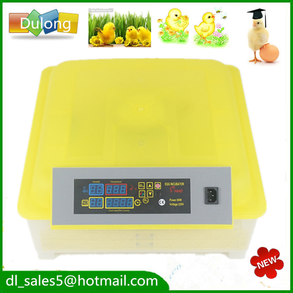Fast ship from England ! Small  egg incubator hatching machine automatic turning  chicken egg incubator temperature
