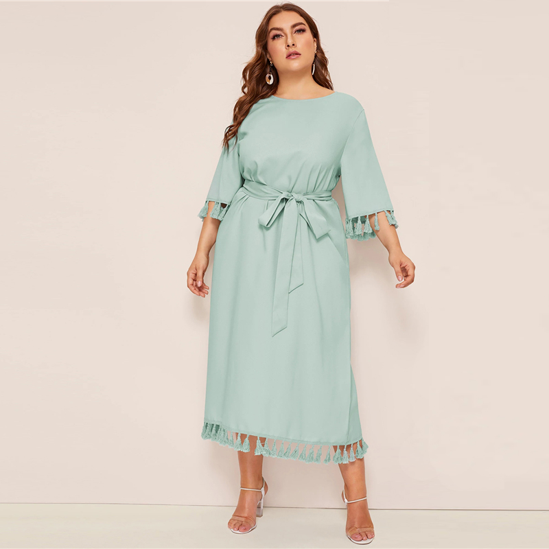 01dbe1116c442 Sheinside Plus Size Elegant Fringe Detail Midi Dress Women 2019 ...