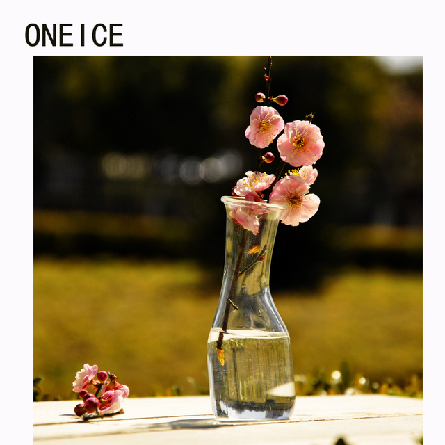 Oneice Simple Glass Vase Transparent Home Accessories Fashion Flower
