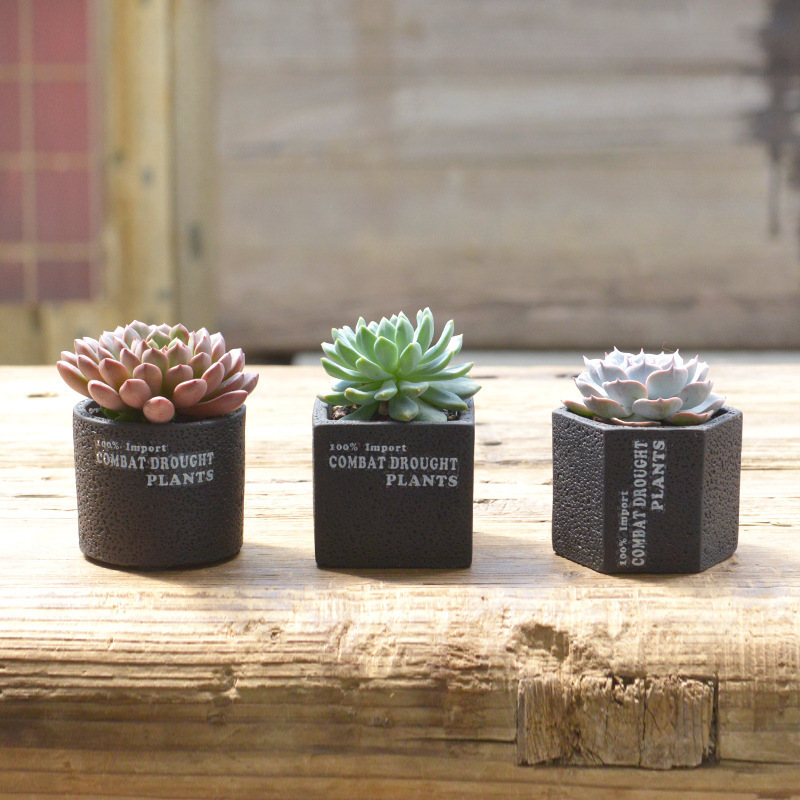 Very cute 5 Styles mini Flowerpot Cement Concrete Succulent Planter Pots Tiny Flower Pots Vase For Home Garden Plant