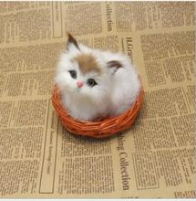 WYZHY simulation cat Home decoration creative desktop decorations photo photography props to send friends gifts 12CM X10CM wyzhy simulation cat home decoration creative desktop decorations photo photography props to send friends gifts 14cm x11cm