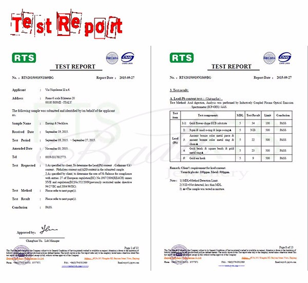 07 test report