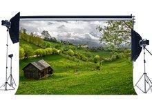 الربيع خلفية ريفي قرية الغابة الغابات الخلفيات الطازجة الزهور الأخضر العشب مرج الطبيعة خلفية