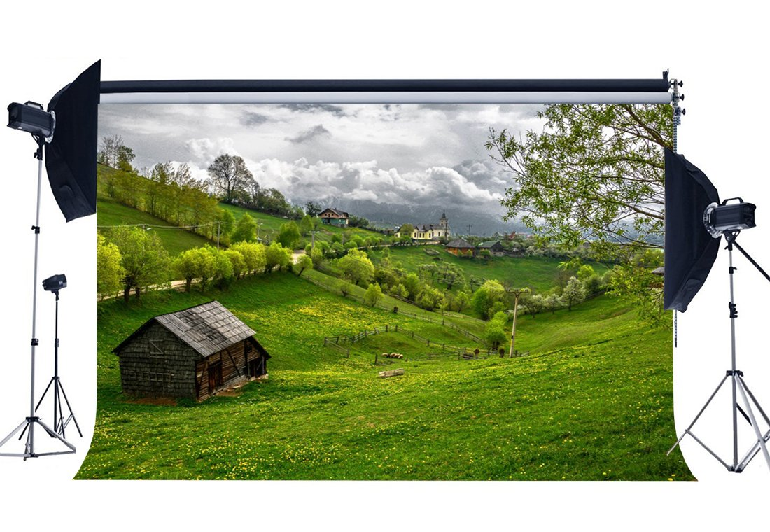 Spring Backdrop Rustic Village Jungle Forest Backdrops Fresh Flowers Green Grass Meadow Nature Background-in Photo Studio Accessories from Consumer Electronics