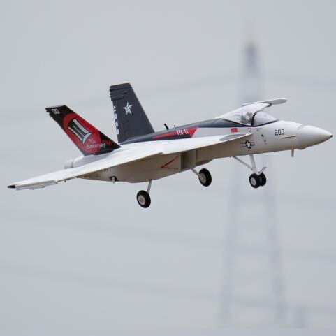 Freewing EPO RC Plane F-18 64 мм Jet PNP