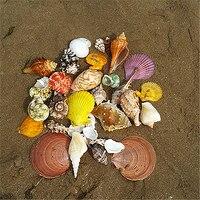 Природные Раковины ракушки белого кораллового дерева украшения звезда рыба океан пляж Морской Декор вечерние Декор