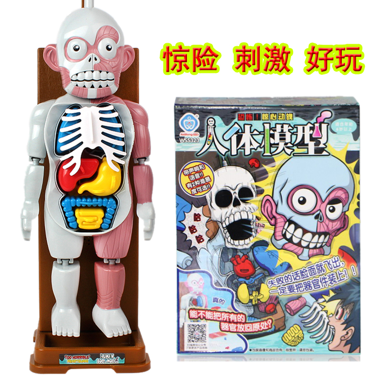 Human model assembled skull statue toy/Halloween Scary Skull Doll Haunted House Escape Horror Props Halloween Decorations