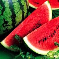 Ranton Garden Round shape watermelon 10G seeds per pack mature fruit 6-8KG, Brix 14%, sweet fruit not flower seeds