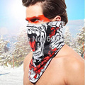 Amazing Outdoor Ski Snowboard Motorcycle Winter Warmer  Sport Full Face Mask Pirates 3D Printed Triangular Scarf Skiing Mask
