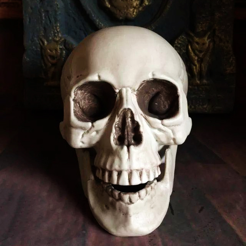 plastic skeleton head halloween decor prop human skull decoration bones statue horror tamper toys bar ghost - Halloween Skeleton Head