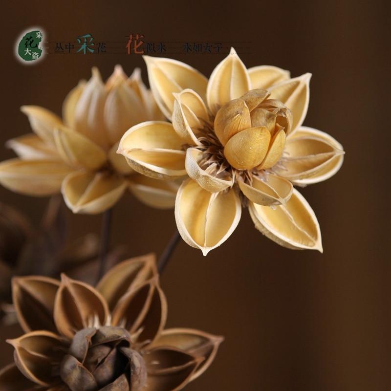 unids cm de madera de loto flor de varilla de metal flexible super natural