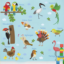 Forest Birds Parrot Ibis Quetzal Chick Woodpecker Turkey Wall Stickers Nursery Kids rooms Decorations PVC Home Mural DIY Decals(China)