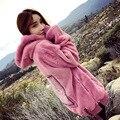 Marea coreana Otoño y Chaqueta de Invierno con Engrosamiento de Cachemira Sueltos Hoodies Mujeres Sudaderas Pink Manga Larga Tops Streetwear