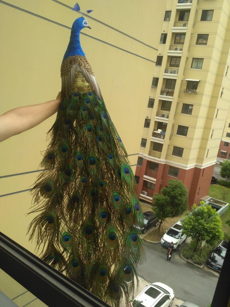 Énorme belle simulation modèle de paon mousse et plume grande belle poupée de paon environ 150 cm