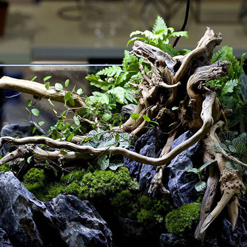 1PC Decorative Aquarium Fish Tank Plant Driftwood Fish Tank Natural Tree Trunk Driftwood Aquarium Decoration figurine