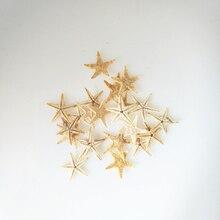 30 шт. мини-Морская звезда, ремесло, украшение, природные морские звезды, сделай сам, пляжный домик, Свадебный декор, размер: 1,8-3 см, ремесла, свадебная морская рыба