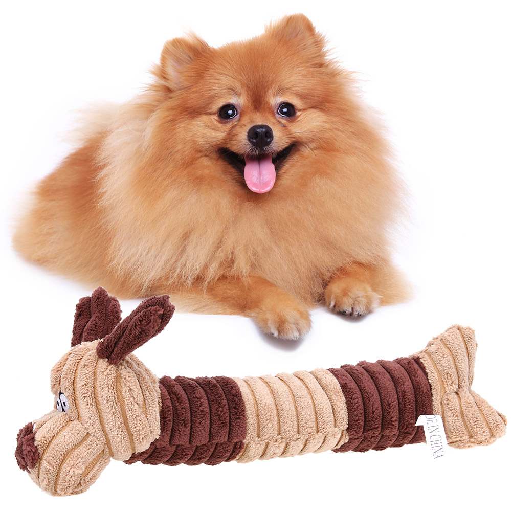 Cute Dog With Squeek Toy